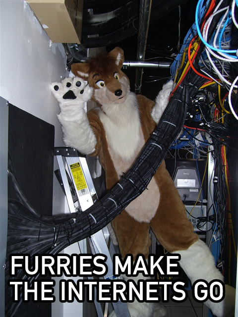 furries-internet